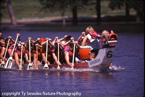 Dragon Boat Races, Cedar Rapids Iowa
